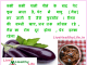 home remedies for gastric problem brinjal