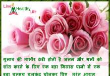 Summer tips Gulab Rose Indian drinks
