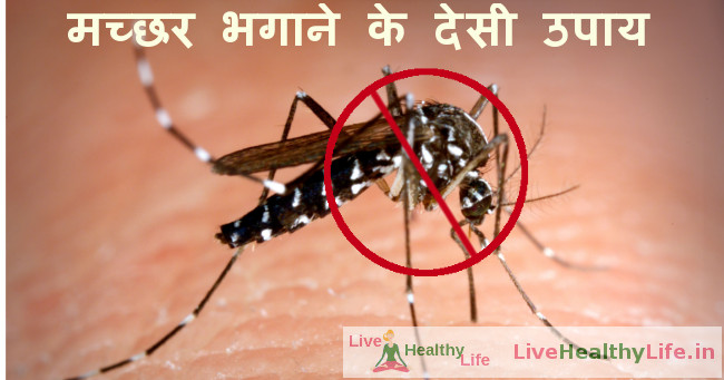 home remedies for mosquitoes