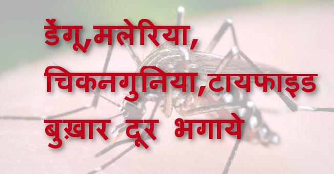 डेंगू,मलेरिया, चिकनगुनिया,टायफाइड बुख़ार दूर भगाये - Dengue, Chikungunya, Malaria & Typhoid home remedies