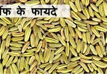 सौंफ के फायदे - Health benefit of fennel