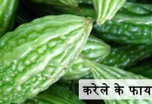 करेले के फायदे – Karela (Bitter Gourd) Ke Fyade