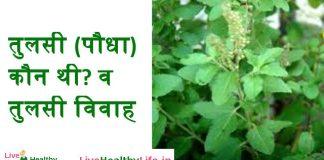 तुलसी (पौधा) कौन थी? व तुलसी विवाह